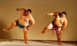 Два сумоиста